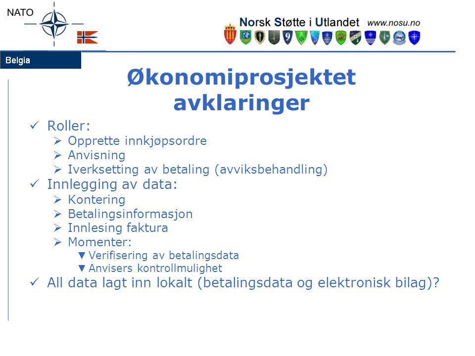 Økonomiprosjektet avklaringer  Roller:  Opprette innkjøpsordre  Anvisning  Iverksetting av betaling (avviksbehandling)  Innlegging av data:  Kon