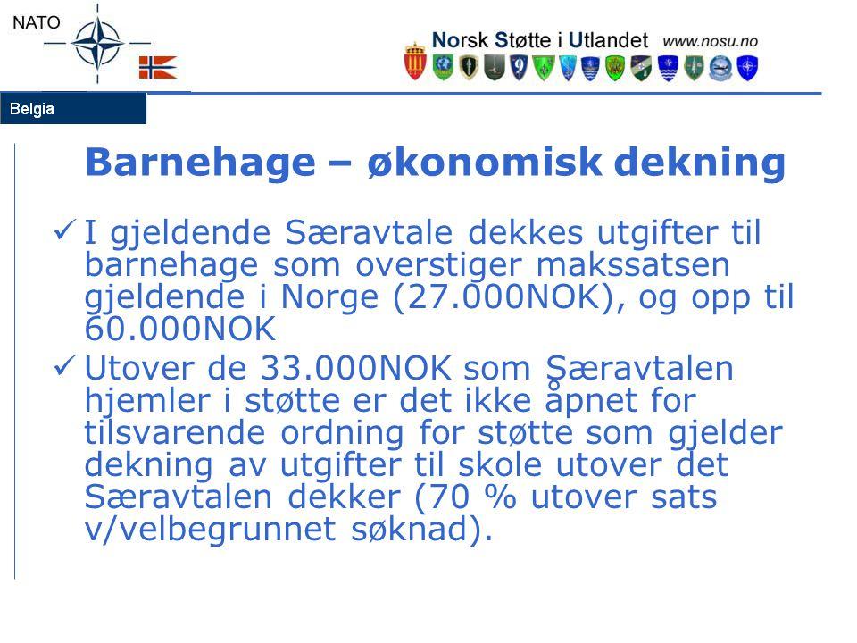 Barnehage – økonomisk dekning  I gjeldende Særavtale dekkes utgifter til barnehage som overstiger makssatsen gjeldende i Norge (27.000NOK), og opp ti