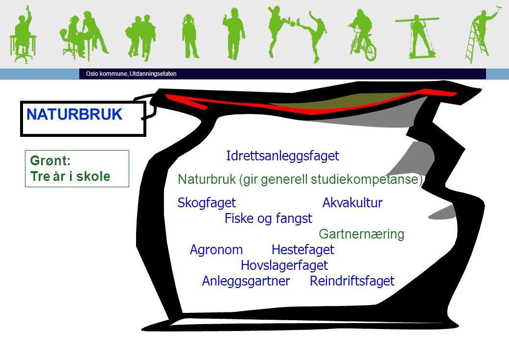 Oslo kommune, Utdanningsetaten NATURBRUK Idrettsanleggsfaget Naturbruk (gir generell studiekompetanse) Skogfaget Akvakultur Fiske og fangst Gartnern æ