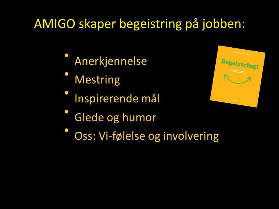 AMIGO skaper begeistring på jobben: • Anerkjennelse • Mestring • Inspirerende mål • Glede og humor • Oss: Vi-følelse og involvering