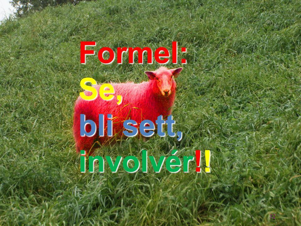 32 Formel:Se, bli sett, involvér!!