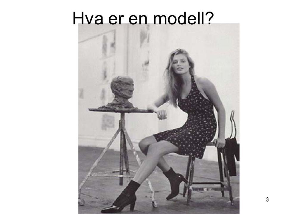 Kirsten Ribu HiO 20083 Hva er en modell?