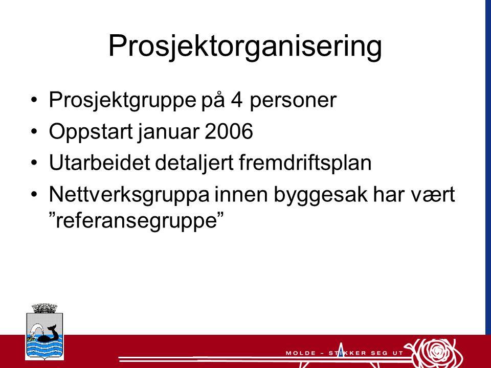 Prosjektorganisering •Prosjektgruppe på 4 personer •Oppstart januar 2006 •Utarbeidet detaljert fremdriftsplan •Nettverksgruppa innen byggesak har vært referansegruppe