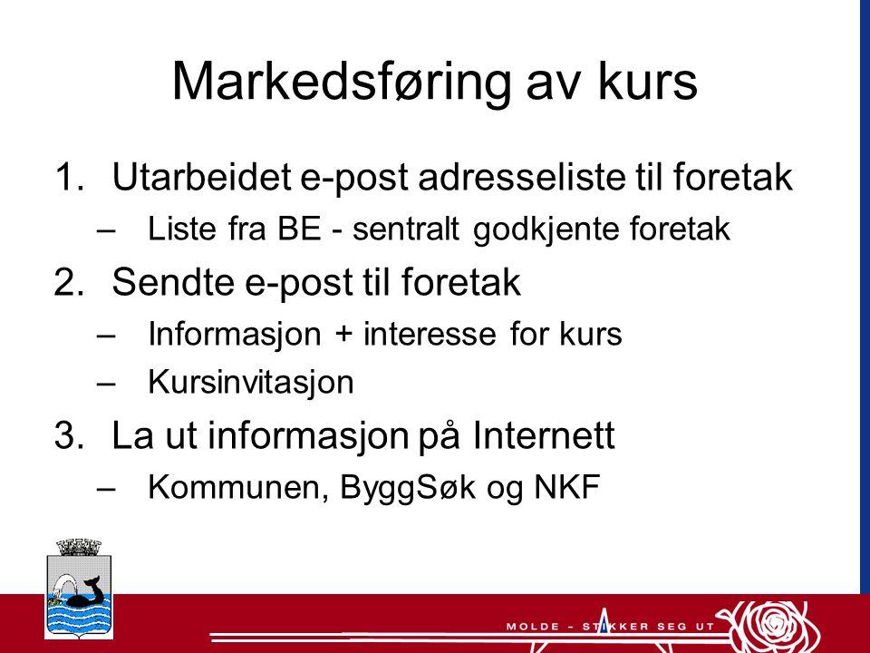 Informasjonstiltak (2) •Distribuerte informasjonsmateriell –Førstelinjetjenesten –Nettverksmedlemmene •Informerte ledelsen •Informerte folkevalgte