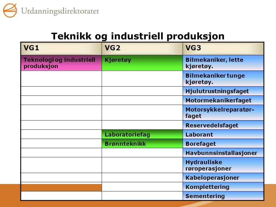 Teknikk og industriell produksjon VG1VG2VG3 Teknologi og industriell produksjon KjøretøyBilmekaniker, lette kjøretøy. Bilmekaniker tunge kjøretøy. Hju