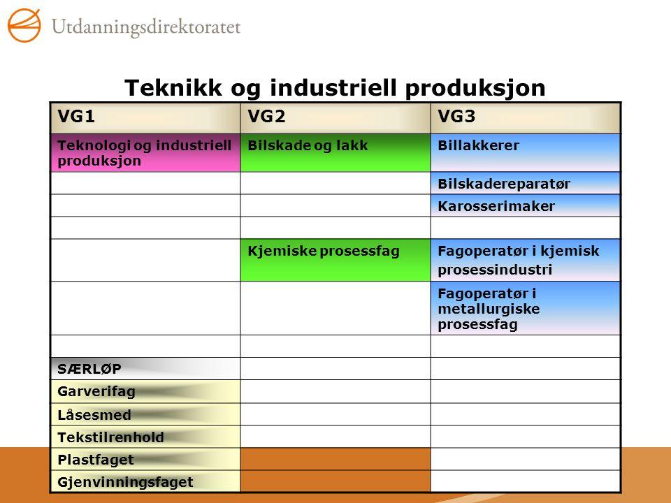 Teknikk og industriell produksjon VG1VG2VG3 Teknologi og industriell produksjon Bilskade og lakkBillakkerer Bilskadereparatør Karosserimaker Kjemiske