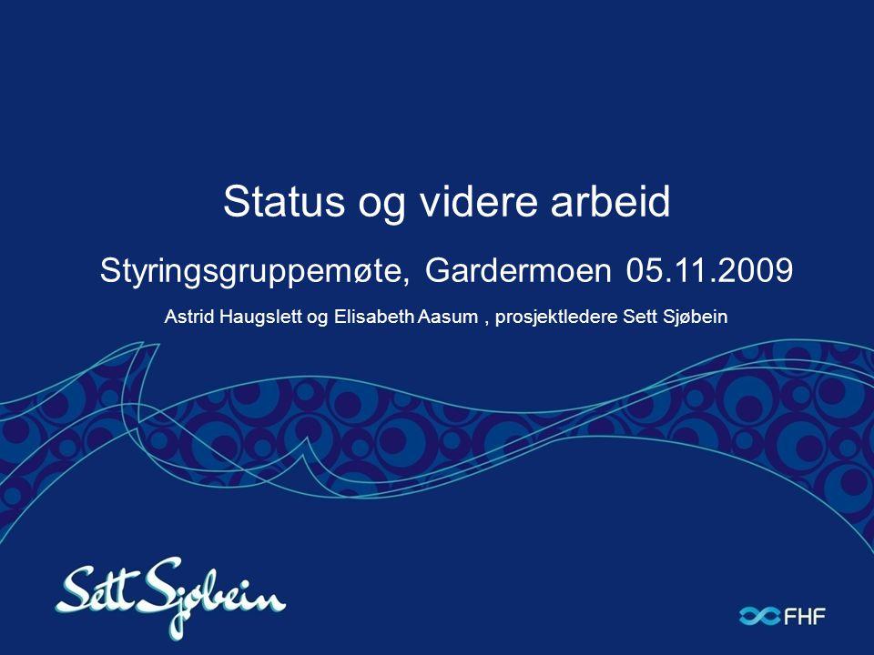 Status og videre arbeid Styringsgruppemøte, Gardermoen 05.11.2009 Astrid Haugslett og Elisabeth Aasum, prosjektledere Sett Sjøbein
