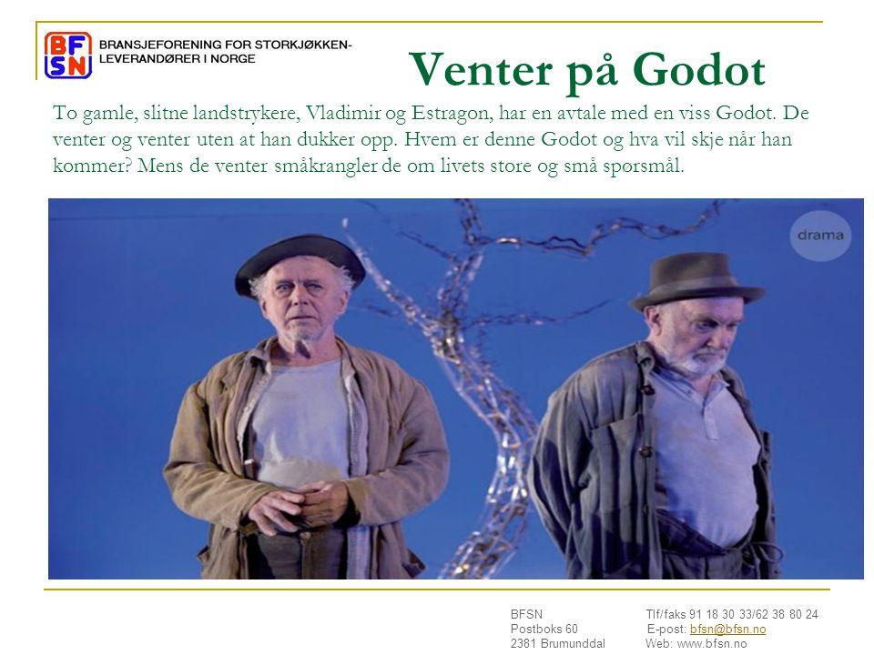 BFSN Tlf/faks 91 18 30 33/62 38 80 24 Postboks 60 E-post: bfsn@bfsn.nobfsn@bfsn.no 2381 Brumunddal Web: www.bfsn.no Venter på Godot To gamle, slitne landstrykere, Vladimir og Estragon, har en avtale med en viss Godot.