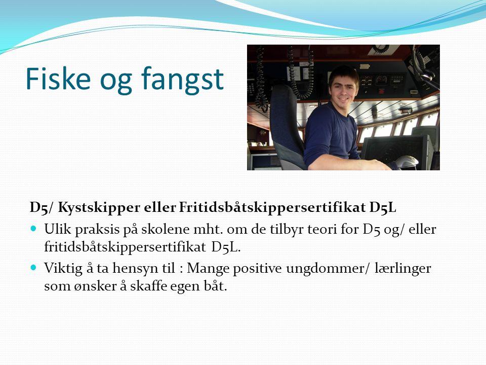 Fiske og fangst D5/ Kystskipper eller Fritidsbåtskippersertifikat D5L  Ulik praksis på skolene mht. om de tilbyr teori for D5 og/ eller fritidsbåtski