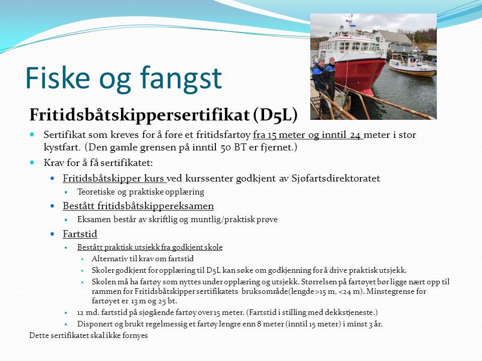 Fiske og fangst Fritidsbåtskippersertifikat (D5L)  Sertifikat som kreves for å føre et fritidsfartøy fra 15 meter og inntil 24 meter i stor kystfart.
