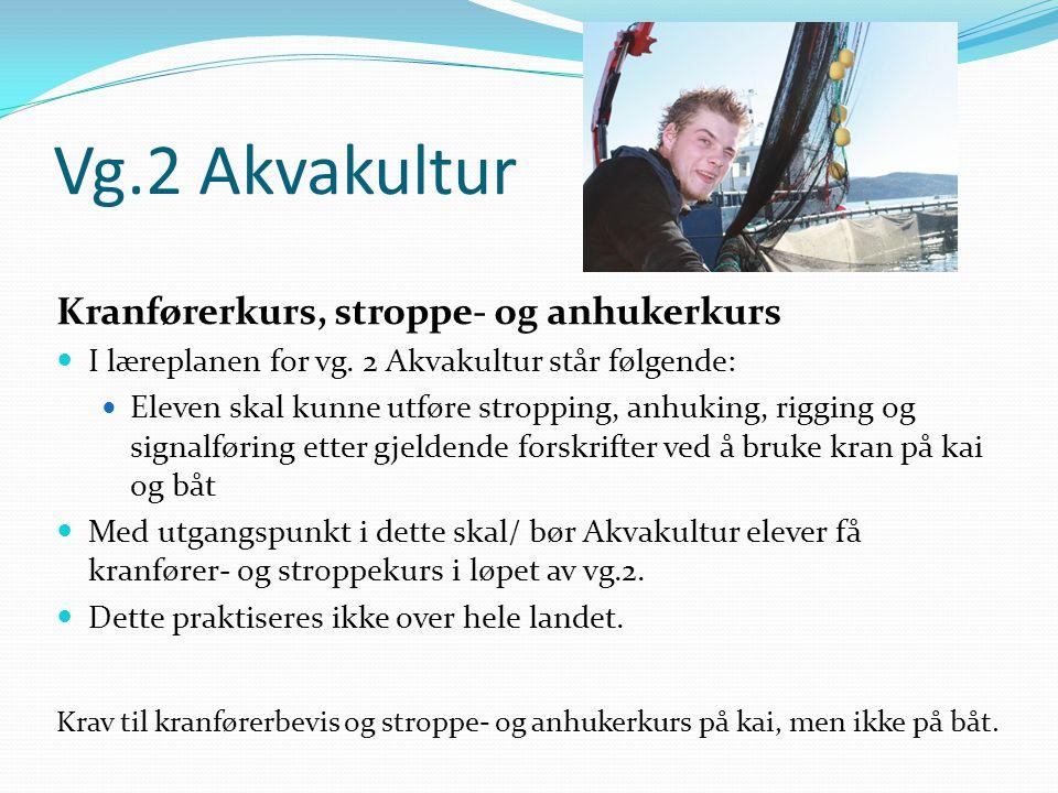 Vg.2 Akvakultur Kranførerkurs, stroppe- og anhukerkurs  I læreplanen for vg. 2 Akvakultur står følgende:  Eleven skal kunne utføre stropping, anhuki