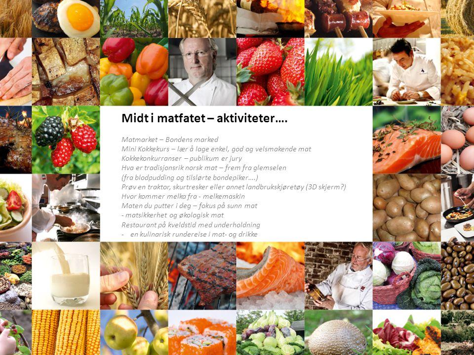 Midt i matfatet – aktiviteter…. Matmarket – Bondens marked Mini Kokkekurs – lær å lage enkel, god og velsmakende mat Kokkekonkurranser – publikum er j