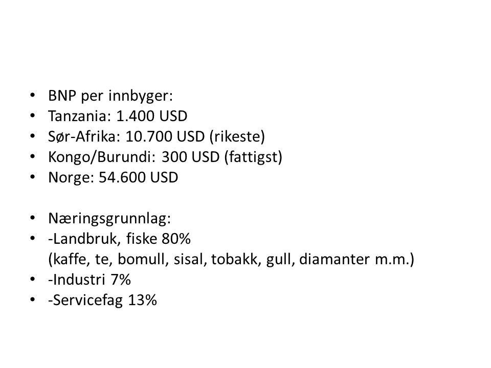• BNP per innbyger: • Tanzania: 1.400 USD • Sør-Afrika: 10.700 USD (rikeste) • Kongo/Burundi: 300 USD (fattigst) • Norge: 54.600 USD • Næringsgrunnlag: • -Landbruk, fiske 80% (kaffe, te, bomull, sisal, tobakk, gull, diamanter m.m.) • -Industri 7% • -Servicefag 13%