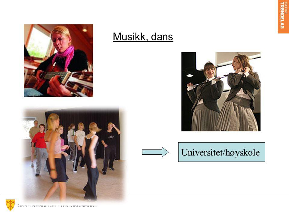 Musikk, dans Universitet/høyskole