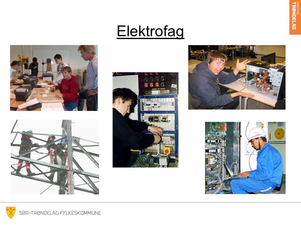 Elektrofag