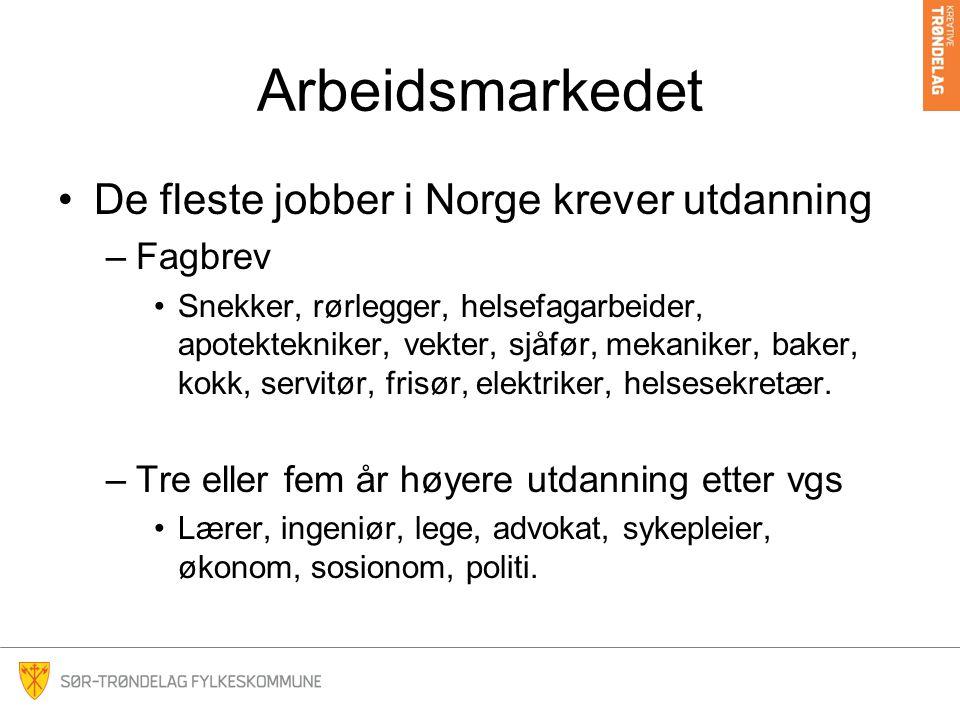 Arbeidsmarkedet •De fleste jobber i Norge krever utdanning –Fagbrev •Snekker, rørlegger, helsefagarbeider, apotektekniker, vekter, sjåfør, mekaniker,