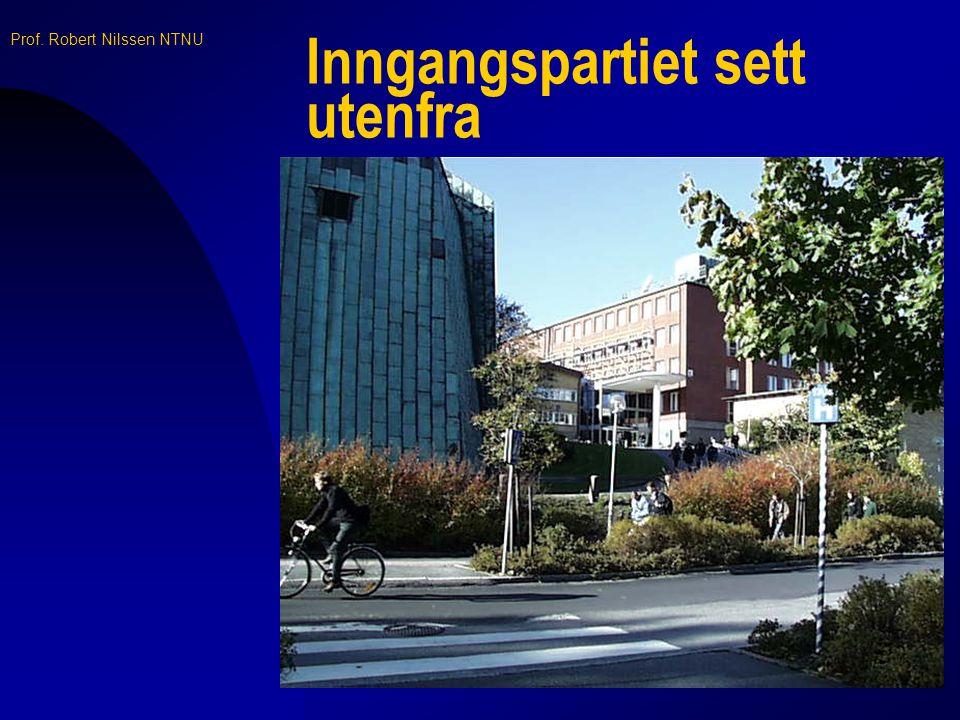 Prof. Robert Nilssen NTNU Høyspenningshallen - - for anledningen restaurant