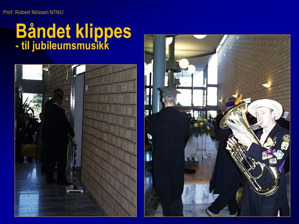 Prof. Robert Nilssen NTNU Krysskoplingstavler - kraftforsyning