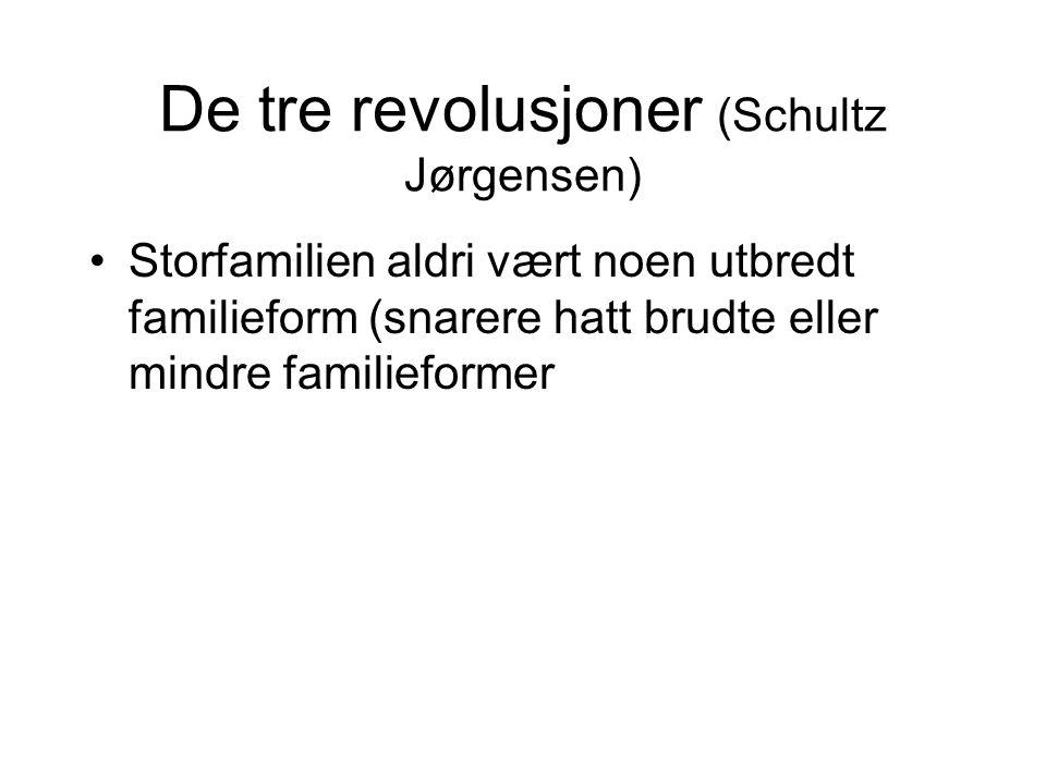 De tre revolusjoner (Schultz Jørgensen) •Storfamilien aldri vært noen utbredt familieform (snarere hatt brudte eller mindre familieformer