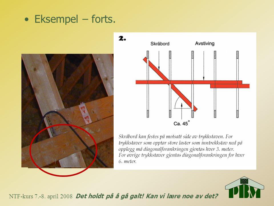 •Eksempel – forts. NTF-kurs 7.-8. april 2008 Det holdt på å gå galt! Kan vi lære noe av det?