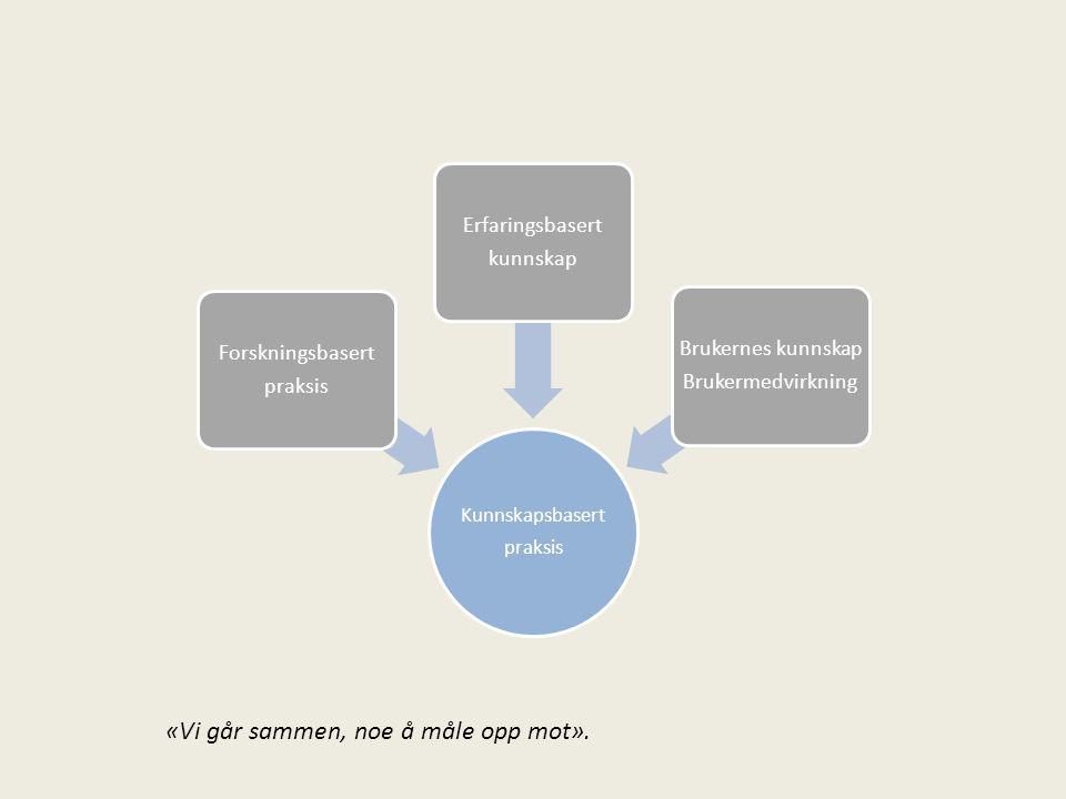 Kunnskapsbasert praksis Forskningsbasert praksis Erfaringsbasert kunnskap Brukernes kunnskap Brukermedvirkning «Vi går sammen, noe å måle opp mot».
