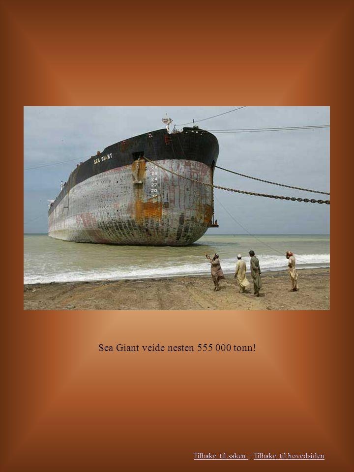 Sea Giant veide nesten 555 000 tonn! Tilbake til saken Tilbake til saken – Tilbake til hovedsidenTilbake til hovedsiden