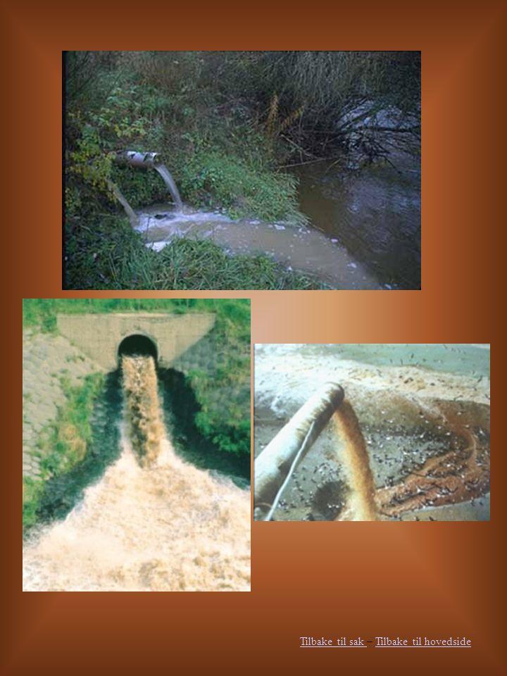 Konsekvenser Som sagt øker de forurensete utslippene, men i flere vestlige og rike land har man funnet måter å rense vannet før det blir skylt ut i naturen.