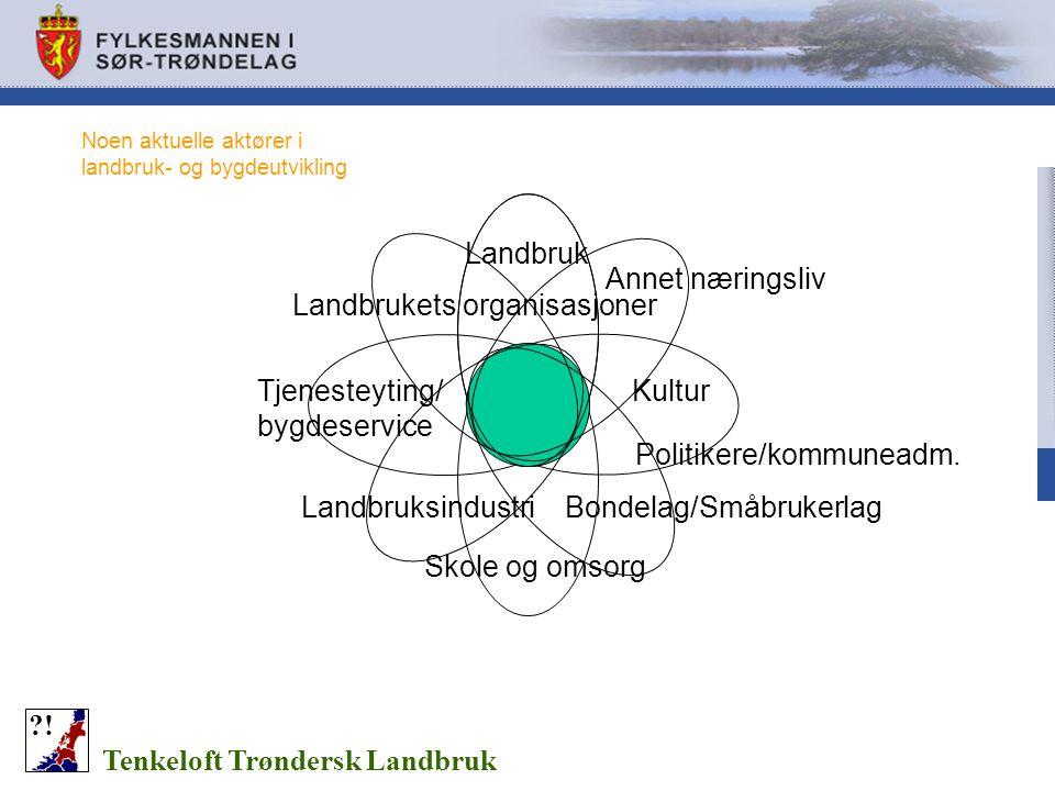 Noen aktuelle aktører i landbruk- og bygdeutvikling Tenkeloft Trøndersk Landbruk ?! Landbruk KulturTjenesteyting/ bygdeservice Skole og omsorg Annet n