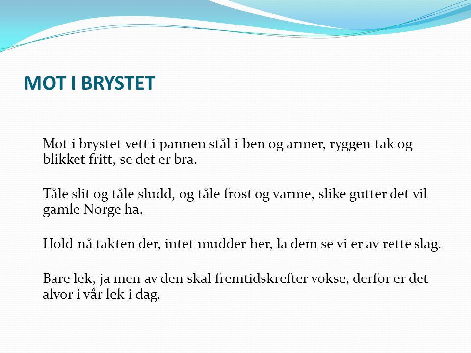 Helse i Norge  Over halvparten av voksne har en sykdom eller skade.