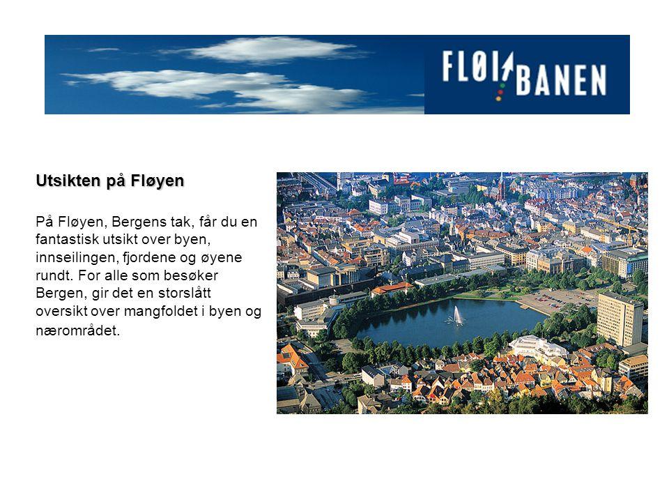 Utsikten på Fløyen På Fløyen, Bergens tak, får du en fantastisk utsikt over byen, innseilingen, fjordene og øyene rundt.