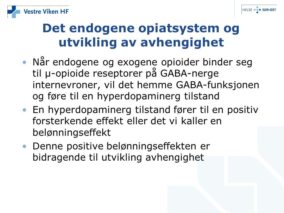 Det endogene opiatsystem og utvikling av avhengighet •Når endogene og exogene opioider binder seg til µ-opioide reseptorer på GABA-nerge internevroner