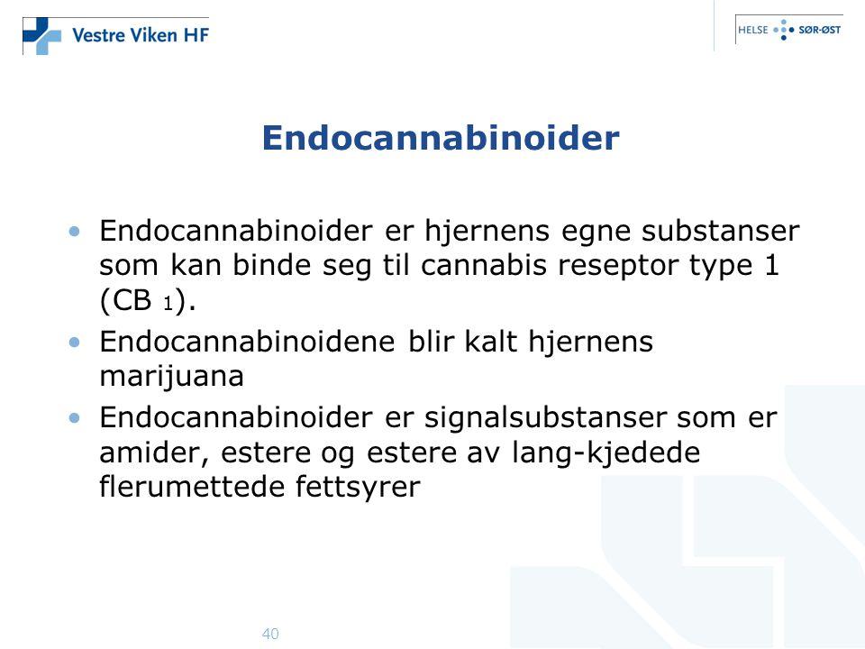 40 Endocannabinoider •Endocannabinoider er hjernens egne substanser som kan binde seg til cannabis reseptor type 1 (CB 1 ). •Endocannabinoidene blir k