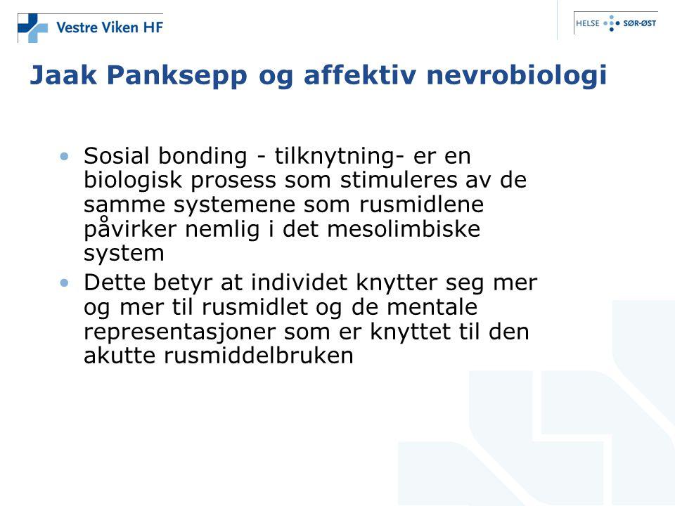 Jaak Panksepp og affektiv nevrobiologi •Sosial bonding - tilknytning- er en biologisk prosess som stimuleres av de samme systemene som rusmidlene påvi