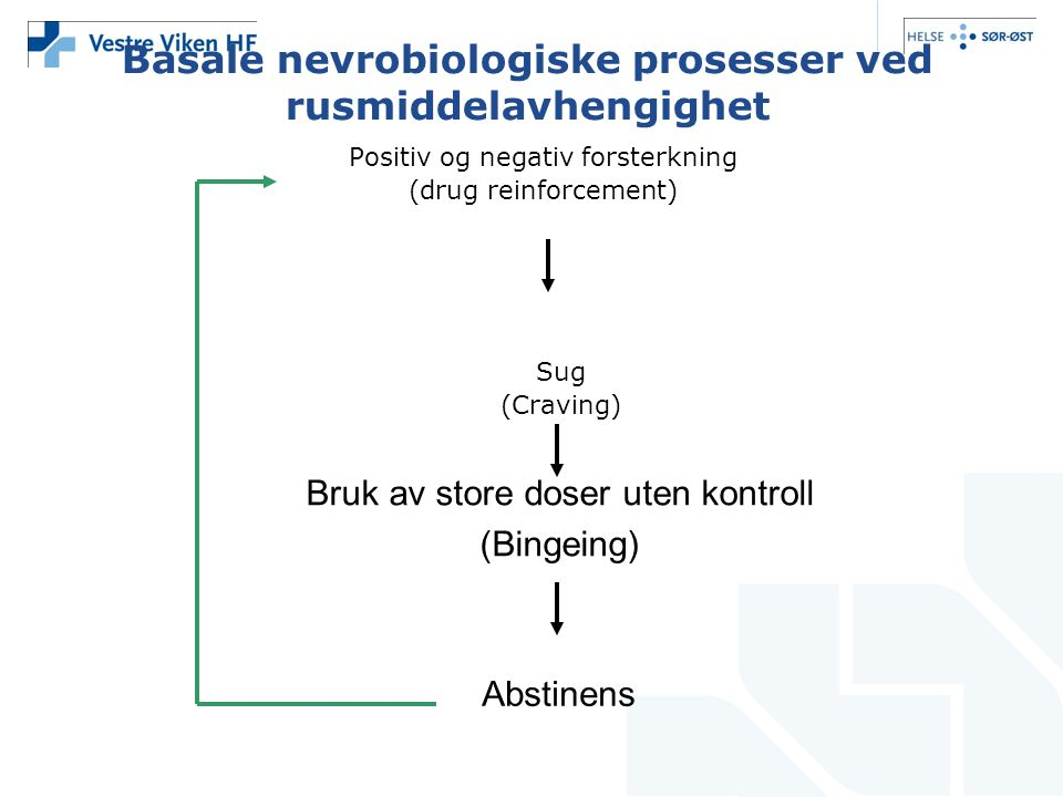 Basale nevrobiologiske prosesser ved rusmiddelavhengighet Positiv og negativ forsterkning (drug reinforcement) Sug (Craving) Bruk av store doser uten
