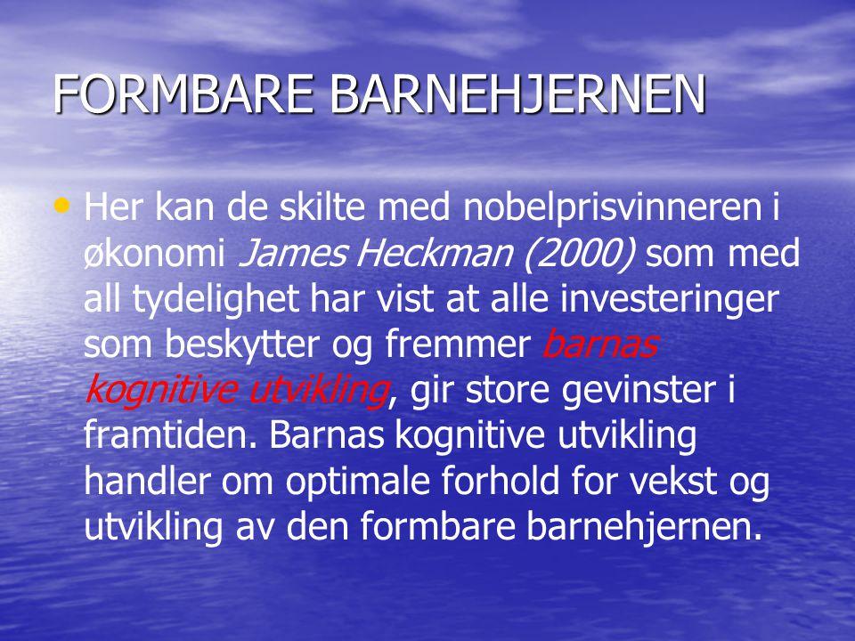 FORMBARE BARNEHJERNEN • • Her kan de skilte med nobelprisvinneren i økonomi James Heckman (2000) som med all tydelighet har vist at alle investeringer