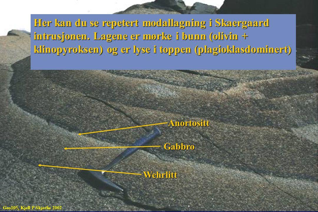 Her kan du se repetert modallagning i Skaergaard intrusjonen. Lagene er mørke i bunn (olivin + klinopyroksen) og er lyse i toppen (plagioklasdominert)