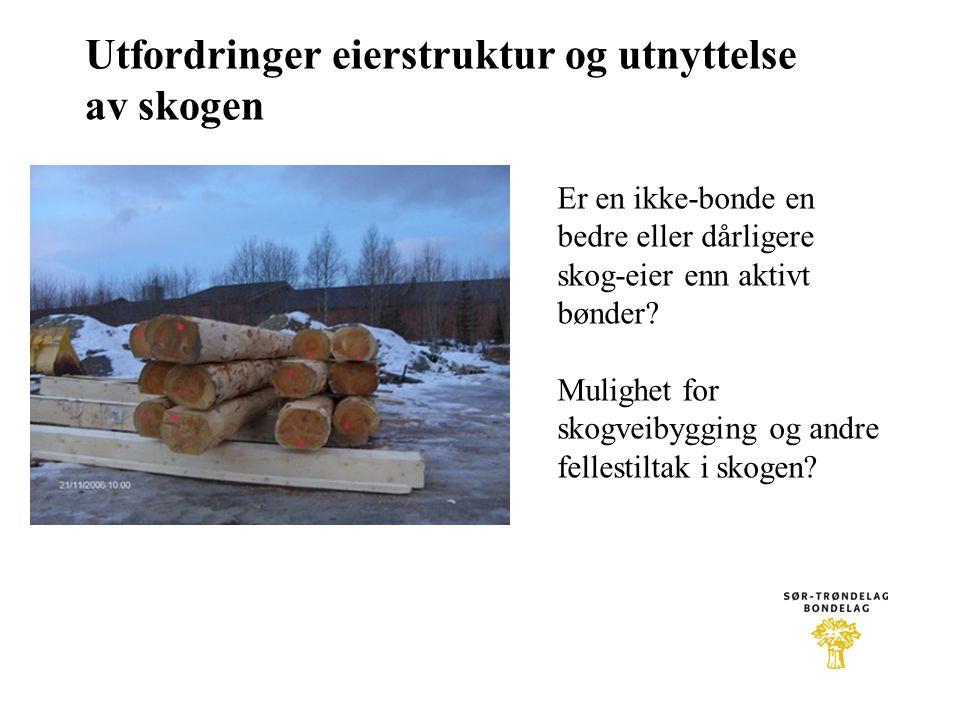 Utfordringer eierstruktur og utnyttelse av skogen Er en ikke-bonde en bedre eller dårligere skog-eier enn aktivt bønder? Mulighet for skogveibygging o