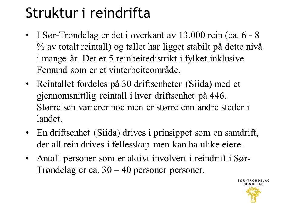 Struktur i reindrifta •I Sør-Trøndelag er det i overkant av 13.000 rein (ca. 6 - 8 % av totalt reintall) og tallet har ligget stabilt på dette nivå i