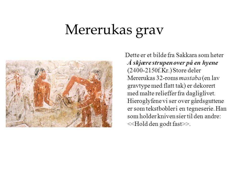 Mererukas grav Dette er et bilde fra Sakkara som heter Å skjære strupen over på en hyene (2400-2150f.Kr.) Store deler Mererukas 32-roms mastaba (en lav gravtype med flatt tak) er dekorert med malte relieffer fra dagliglivet.