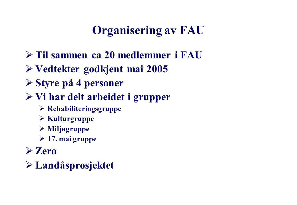 Agenda  Organisering av FAU  Styret i FAU skoleåret 2005/2006  Arbeidsdeling FAU/Foreldrekontakter  Kommunikasjon mellom FAU/Foreldrekontakter  S