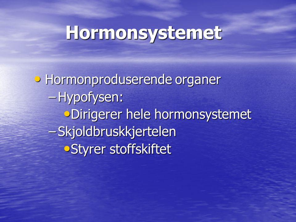 Hormonsystemet Hormonsystemet • Hormonproduserende organer –Hypofysen: • Dirigerer hele hormonsystemet –Skjoldbruskkjertelen • Styrer stoffskiftet