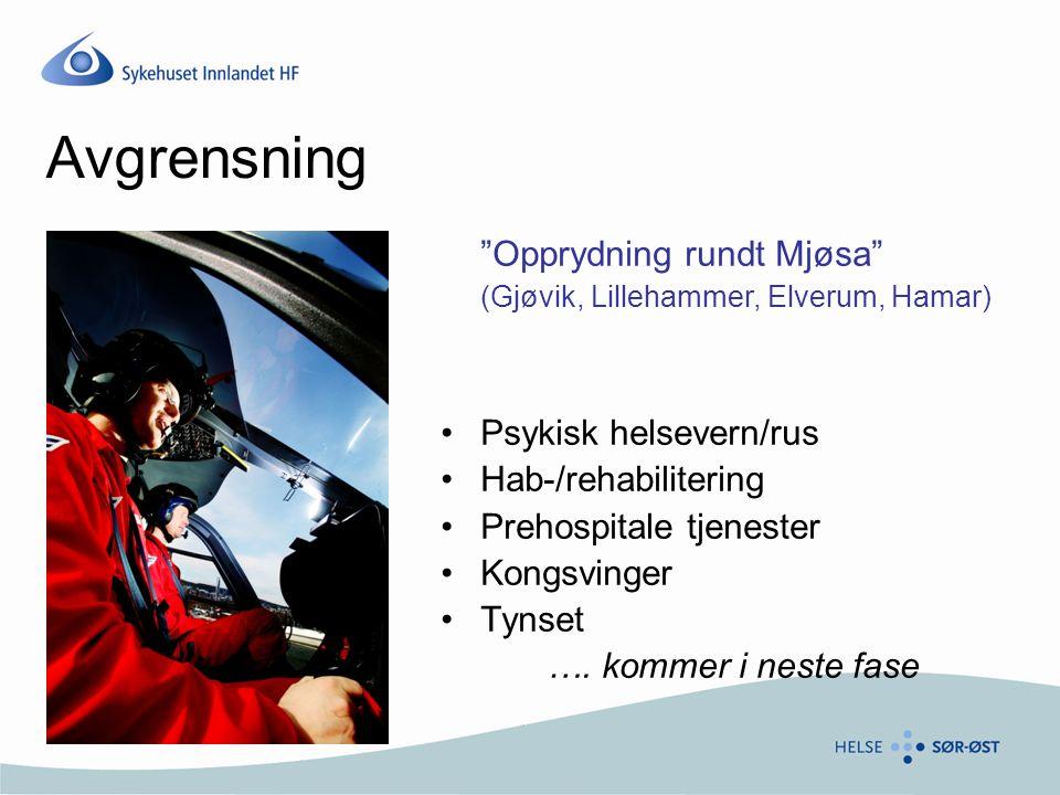 Avgrensning Opprydning rundt Mjøsa (Gjøvik, Lillehammer, Elverum, Hamar) •Psykisk helsevern/rus •Hab-/rehabilitering •Prehospitale tjenester •Kongsvinger •Tynset ….