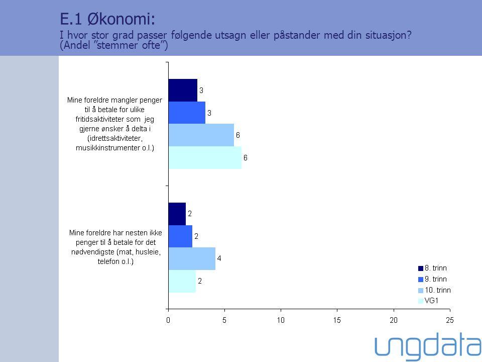 """E.1 Økonomi: I hvor stor grad passer følgende utsagn eller påstander med din situasjon? (Andel """"stemmer ofte"""")"""