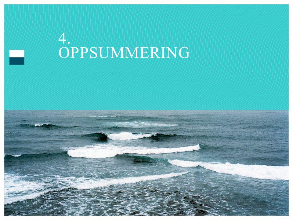 4. OPPSUMMERING