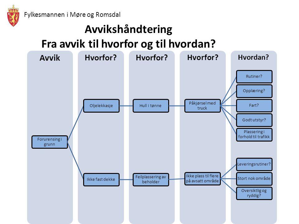 Fylkesmannen i Møre og Romsdal Avvikshåndtering Fra avvik til hvorfor og til hvordan?