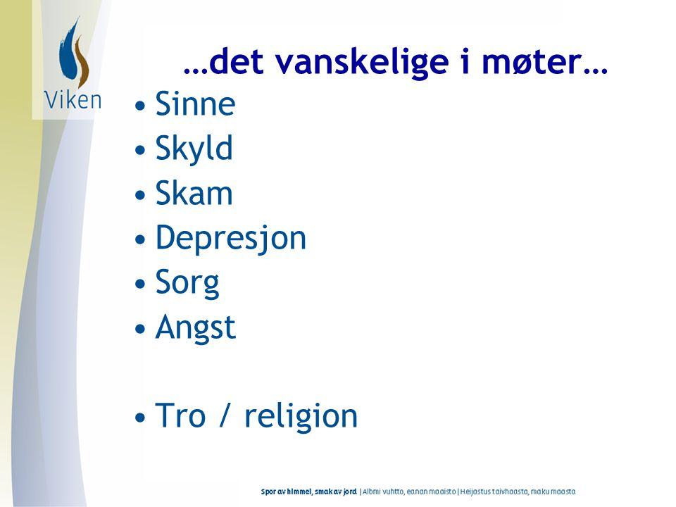 …det vanskelige i møter… •Sinne •Skyld •Skam •Depresjon •Sorg •Angst •Tro / religion
