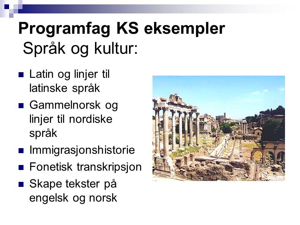 Programfag KS eksempler Språk og kultur:  Latin og linjer til latinske språk  Gammelnorsk og linjer til nordiske språk  Immigrasjonshistorie  Fone