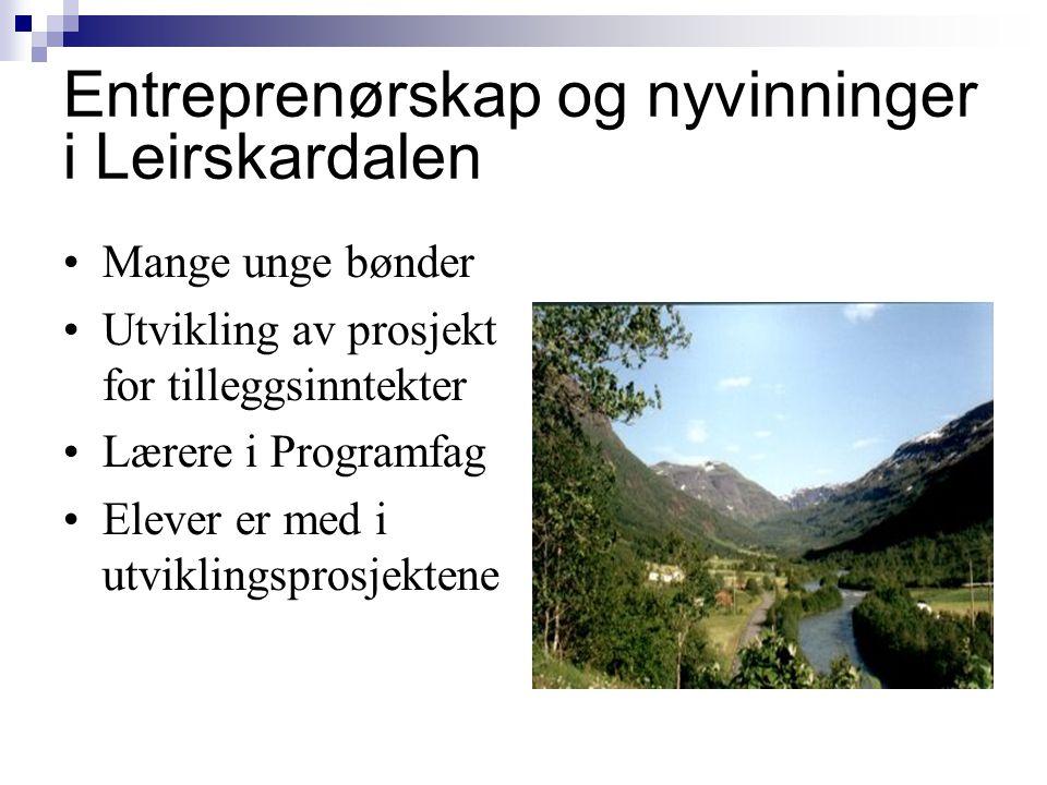 Entreprenørskap og nyvinninger i Leirskardalen •Mange unge bønder •Utvikling av prosjekt for tilleggsinntekter •Lærere i Programfag •Elever er med i u