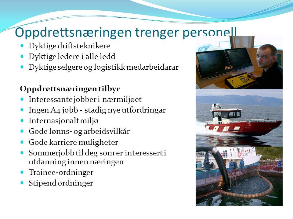 Akvakultur i M&R ÅrAntall elever vg 2 Akvakultur i M&R Fagbrev 20000 20017 200212 20038 20044 20057 20069 20071 20081 20090 Totalt49139