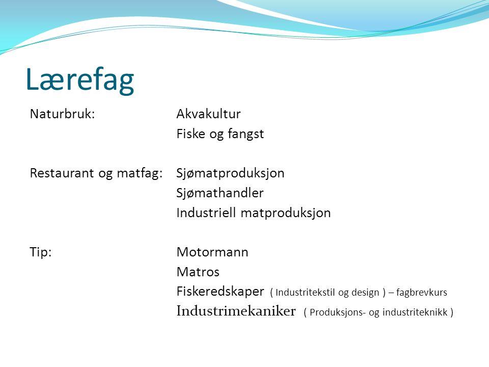 Rekruttering til Akvakultur – Årsmøte FosFor i Ålesund 02.